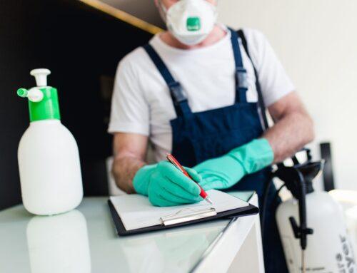 شركة مكافحة الرمة في الشارقة |0559505474  |النمل الابيض الرمة